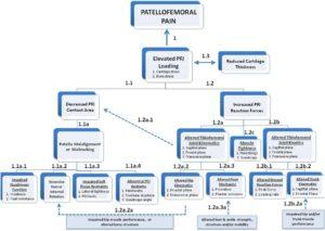potential pathways to anterior knee pain